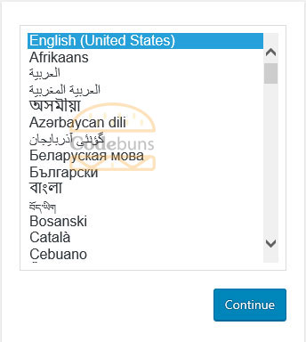 wordpress select appropriate language
